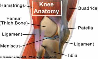 Pain Behind the Knee: Causes, How to Treat It and When to See a Doctor