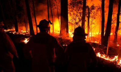 Hundreds of people arrested for the launch of Australian Bushfires, Whilst Media Blames ' Climate Change '