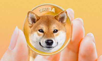 Picture of a hand holding a Shiba Inu coin