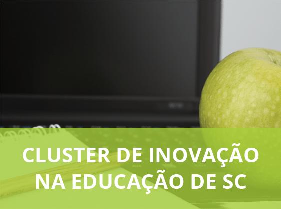 Cluster Educação