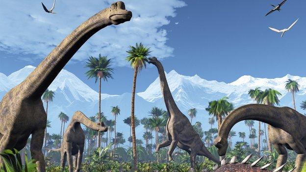 Sauropod Fun Facts