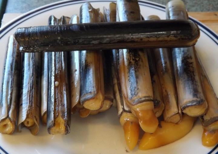 navajas - Como preparar una ensalada americana con marisco