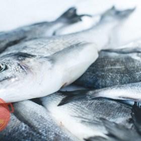 Recetas Ecuatorianas con pescado