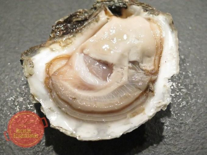 Recetas con ostras