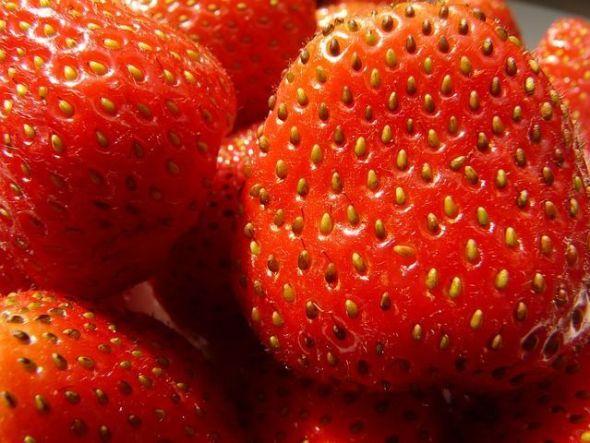 strawberries-58195_640
