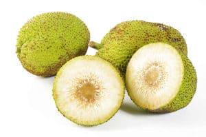 Fruta de Pan