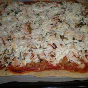 e024366fc83339fc9c4dbf30783ac11f - ▷ Pizza de atún y pollo 🍕