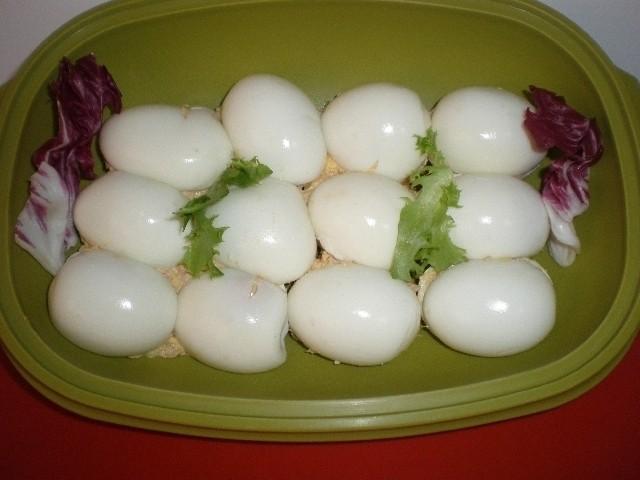 580ec6e22c8909e49df20c679c74d1c3 - ▷ Huevos rellenos de atún 🥚 🐟