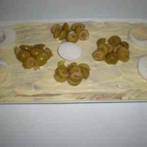 c5aba44d28efa970d69d4f7d7ec869e3 - ▷ Ensaladilla con cobertura de mayonesa 🥔 🥕