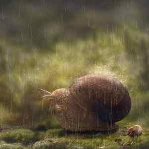510f319cf8228eaeec295d7874fc6996 - ▷ Te coge la lluvia 📖