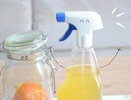 Vinaigre blanc :  spray naturel WC 750 ml pour 0,20 euros !