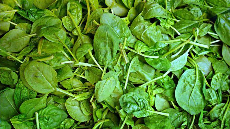 fruit legume epinards