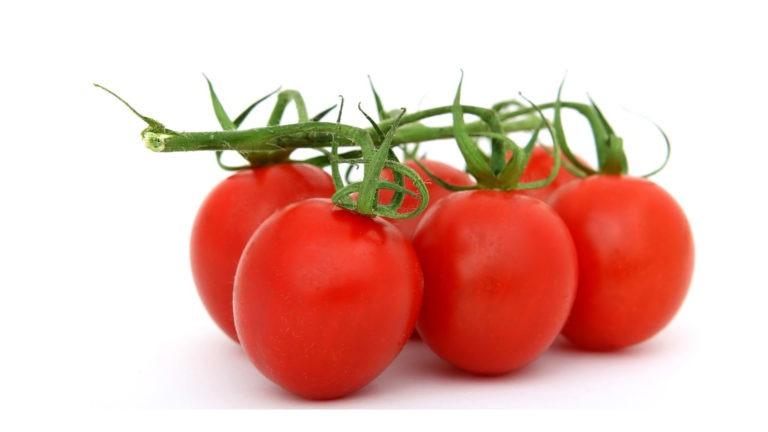 fruit legume tomate