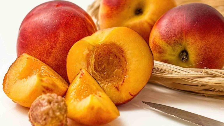 fruits legumes saison nectarine