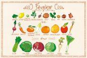 Fruits & légumes Février