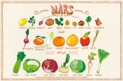 Fruits & légumes Mars