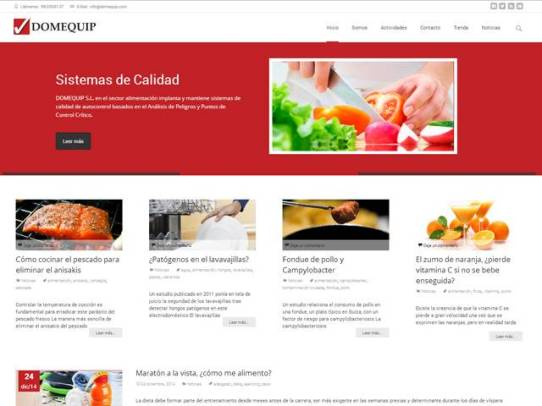 Diseño Web Domequip