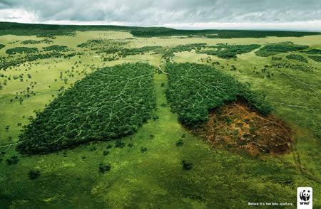 Propaganda Ecológica. (4/6)