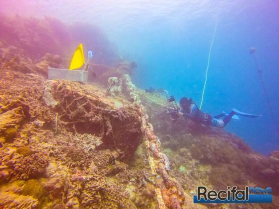 Une chaine et ses corps morts une fois les coraux retirés.