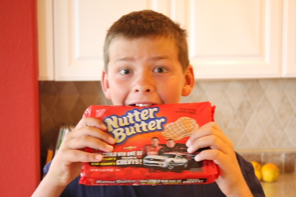 RecipeBoy with Nutter Butter Cookies