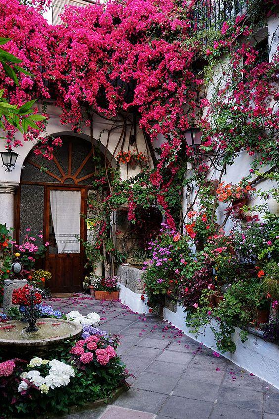 Colorful Backyard Garden 15