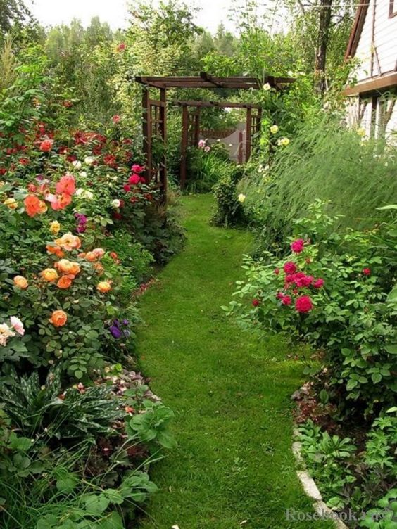 Colorful Backyard Garden 7