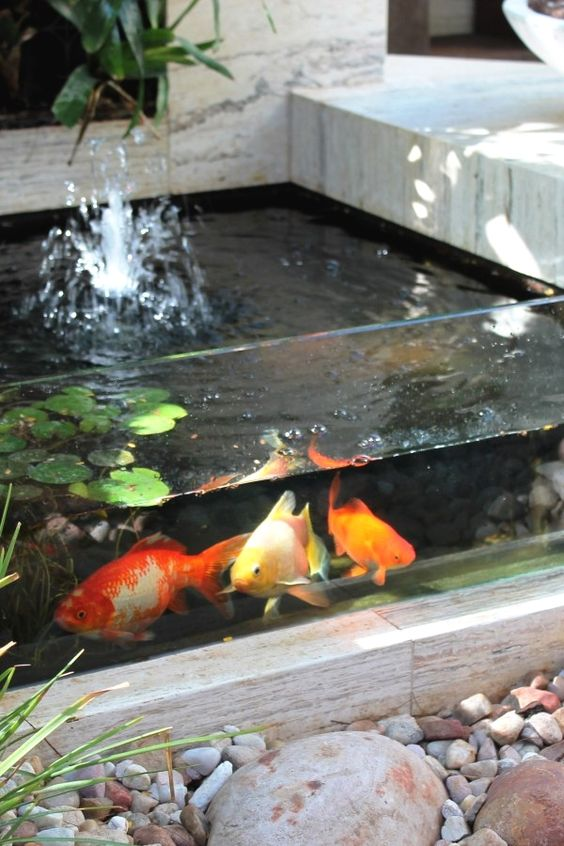 koi pond landscaping 10