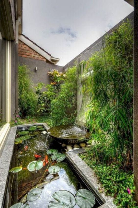 koi pond landscaping 11