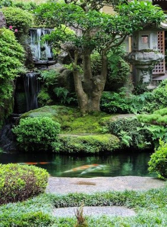 koi pond landscaping 19