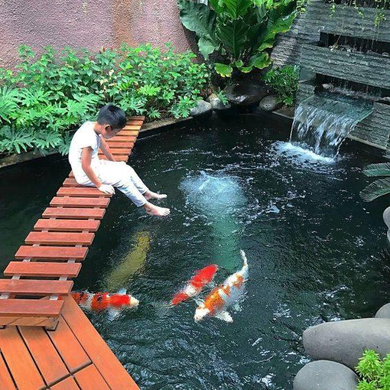 koi pond landscaping 20