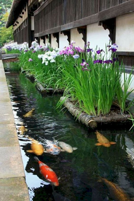 koi pond landscaping 6