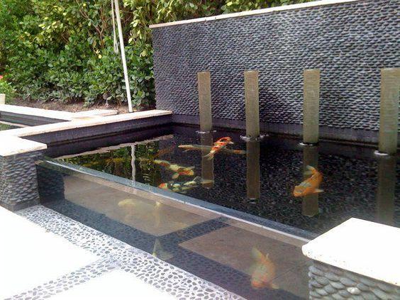 minimalist pond 10