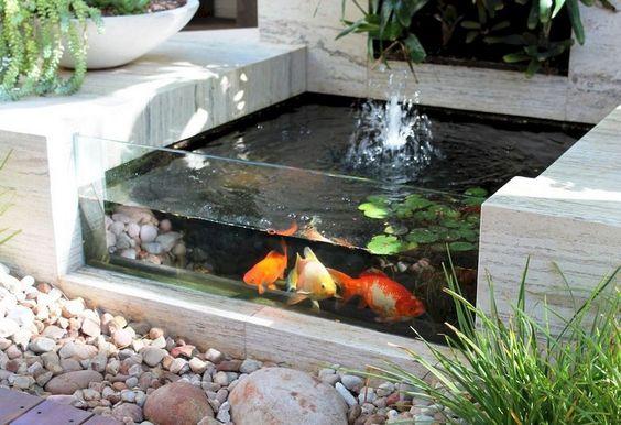 minimalist pond 8