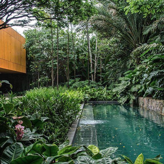 natural swimming pool 14