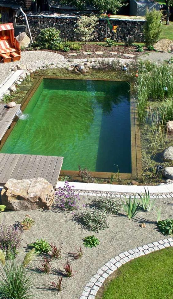natural swimming pool 7