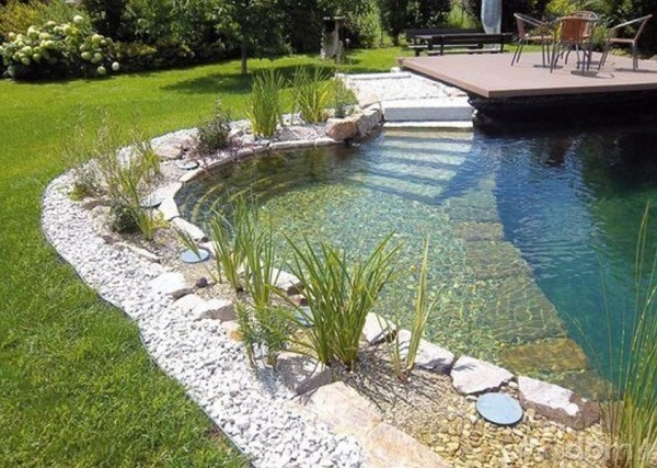 natural swimming pool feature
