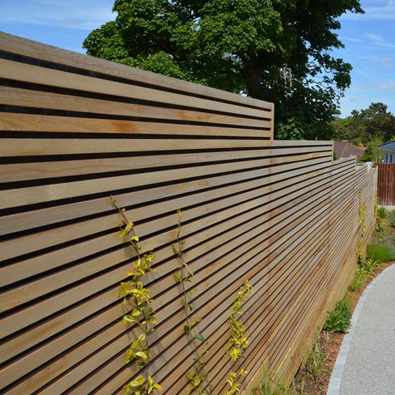 cedar fencing ideas 1