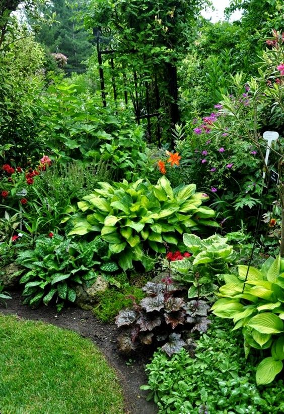 flower-backyard-ideas-18