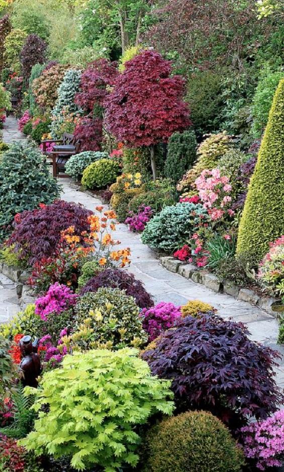 flower backyard ideas 25