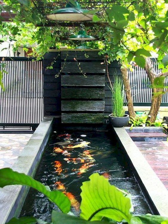 small backyard pond 20