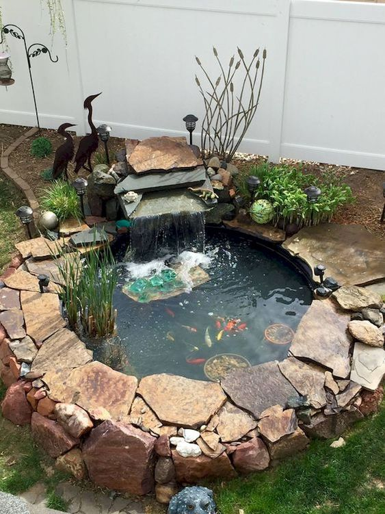 small backyard pond 9