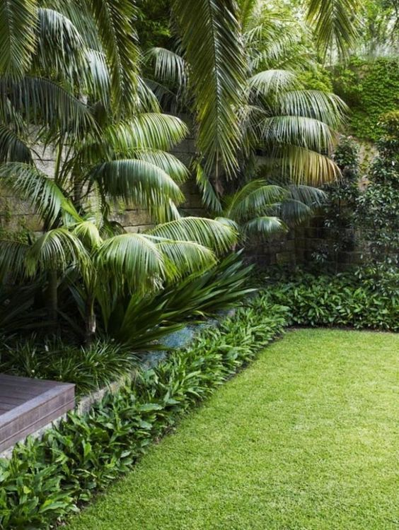 tropical backyard ideas 13