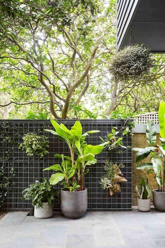 tropical backyard ideas 16