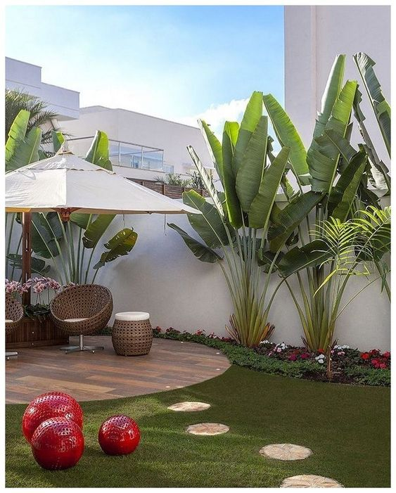 tropical backyard ideas 23