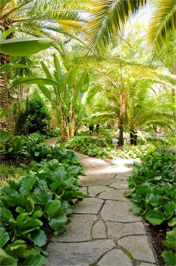 tropical backyard ideas 9