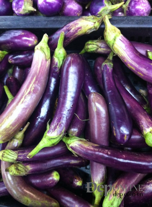 cách chọn mướp, cách chọn cà chua, cách chọn khoai tây, cách chọn bí đao, cách chọn cà tím