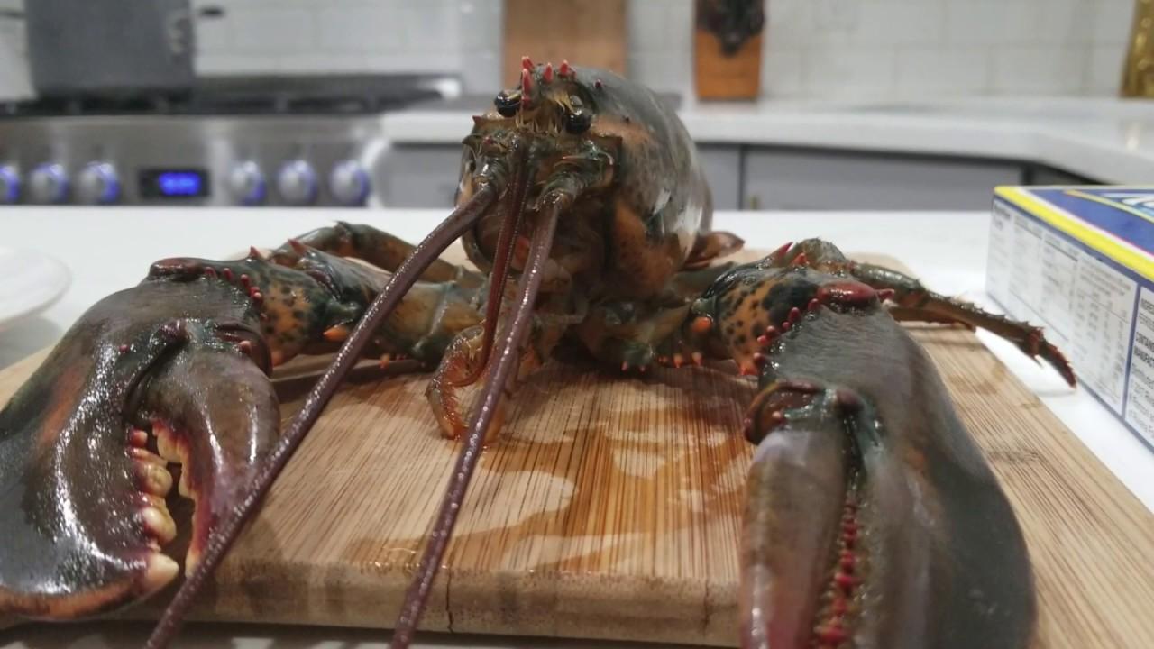 Watch dinner date online free in Perth