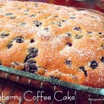 Blueberry Coffee Cake with Cinnamon Pecan