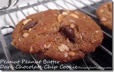Read more about the article Peanut Peanut Butter Dark Chocolate Chip Cookies