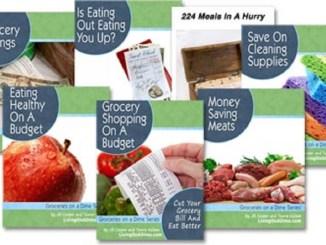Groceries On A Dime e-books | RecipesNow!